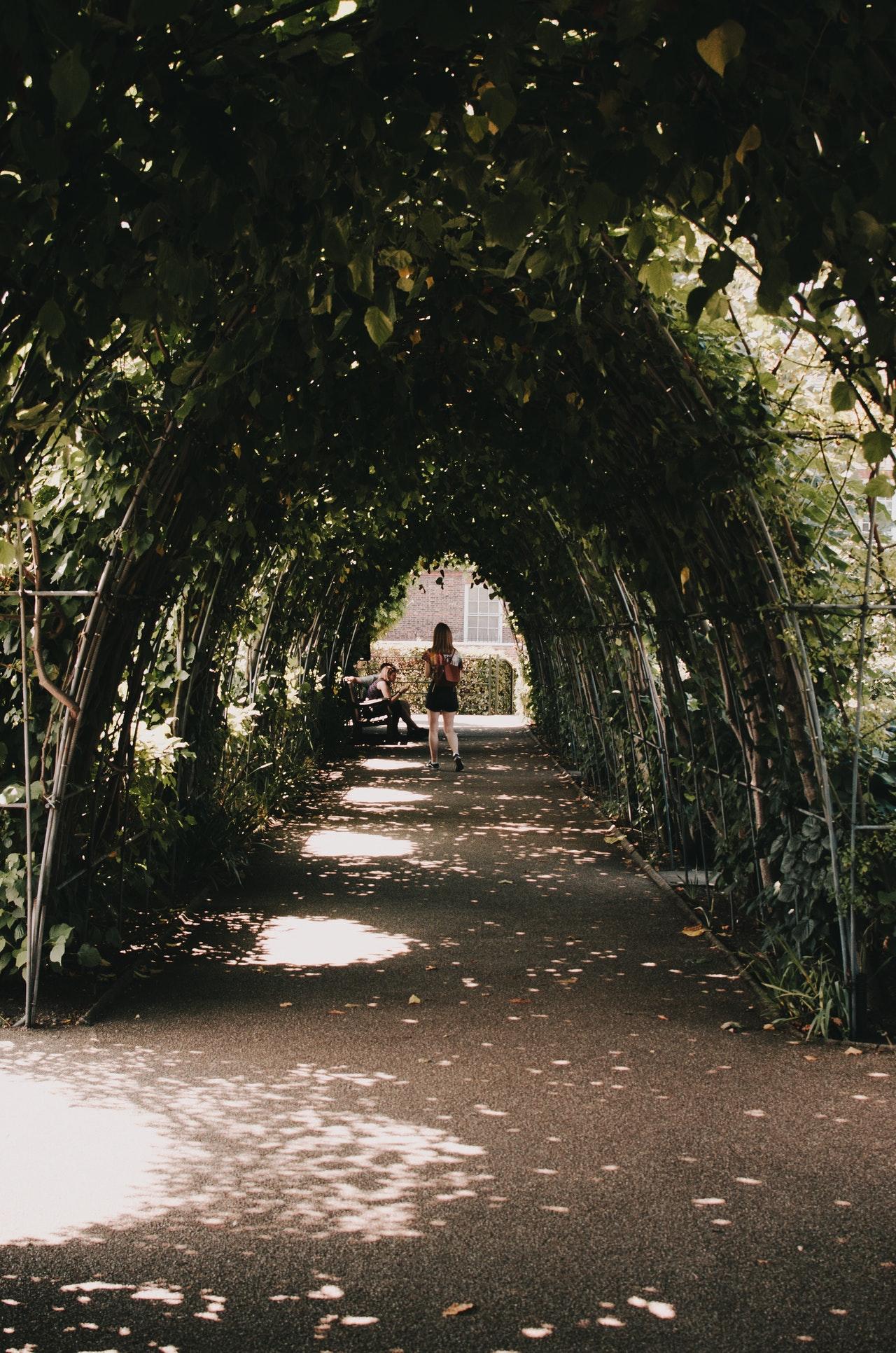 5 Manieren om schaduw in je tuin te creëren